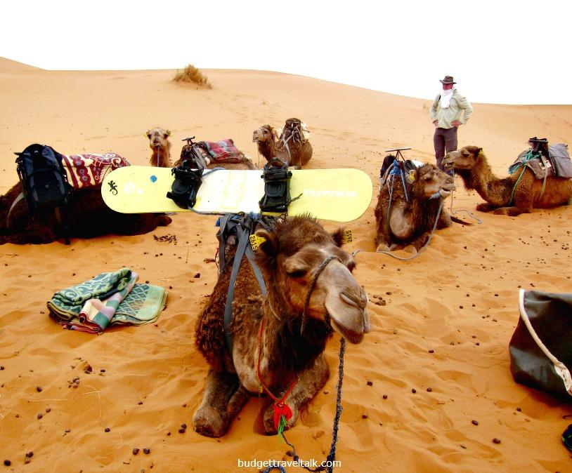 Sahara Snowboard