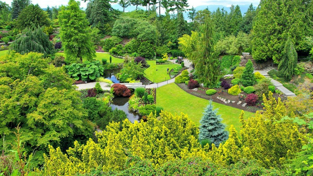 Quarry Garden from Above