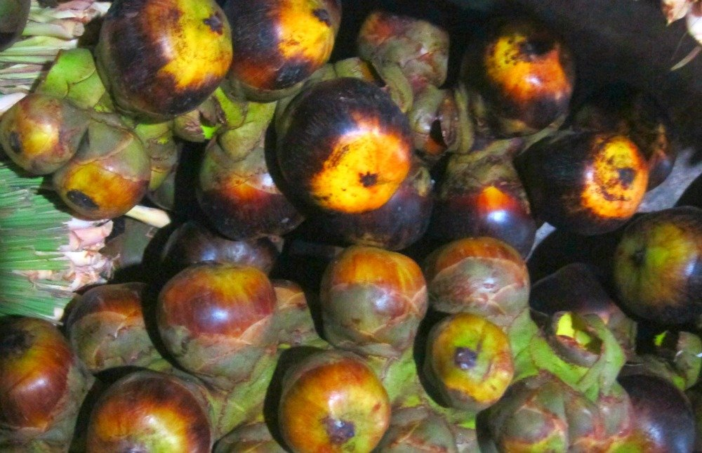 Sugar Palm Fruit Sihanoukville Market Cambodia