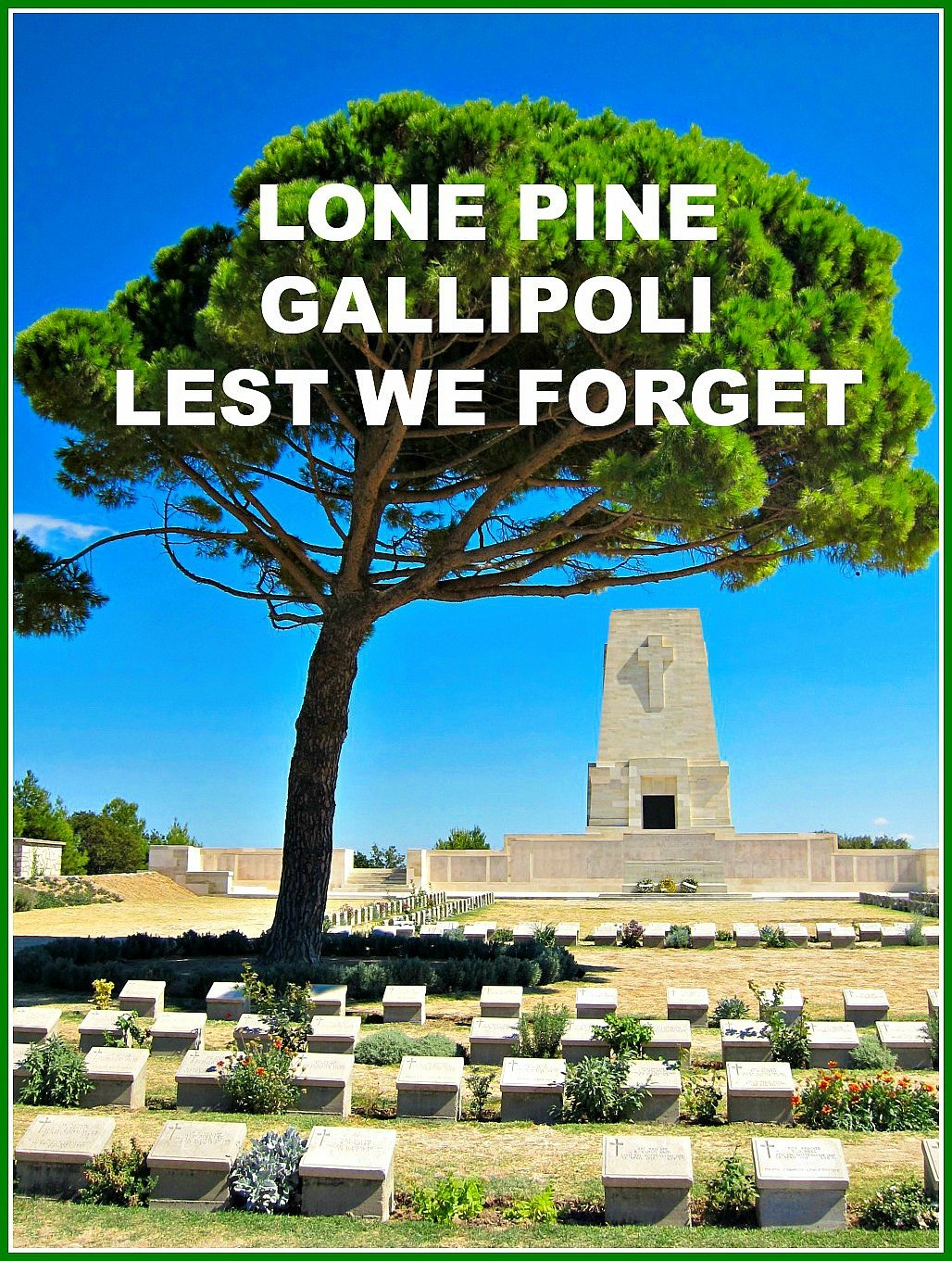 Lone Pine Gallipoli Lest We Forget