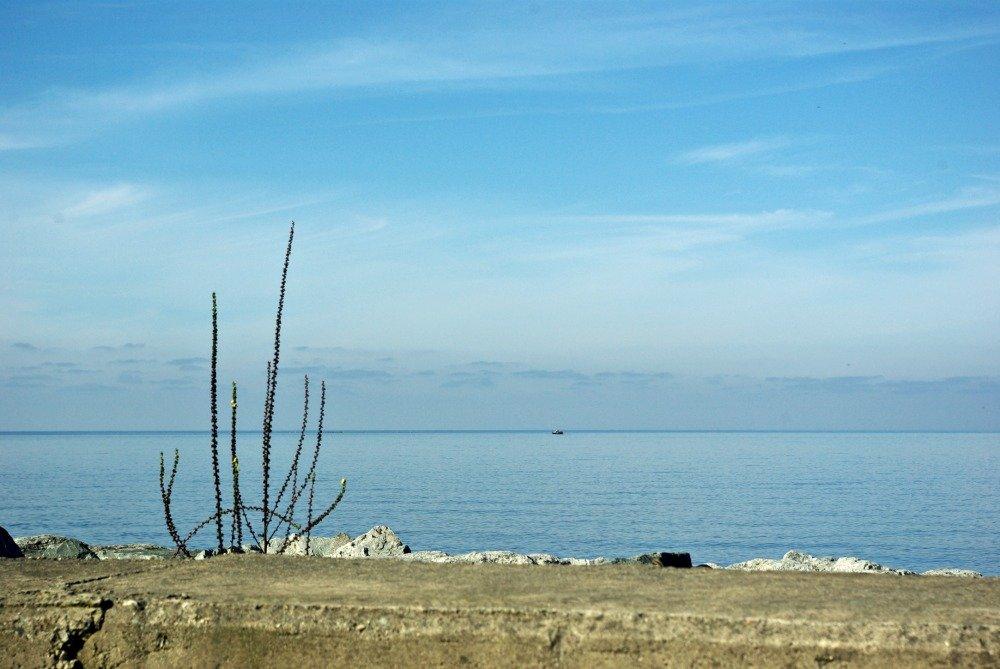 Day 7 Black Sea Blue