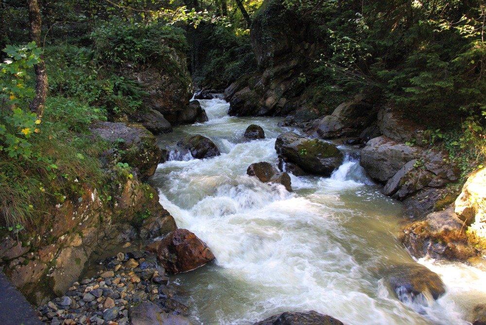 Mountain Stream Sumela.