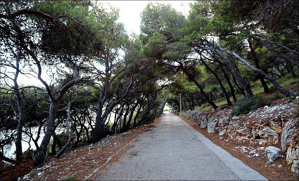 Beachside Road from Pokonji Dol beach to Hvar Town