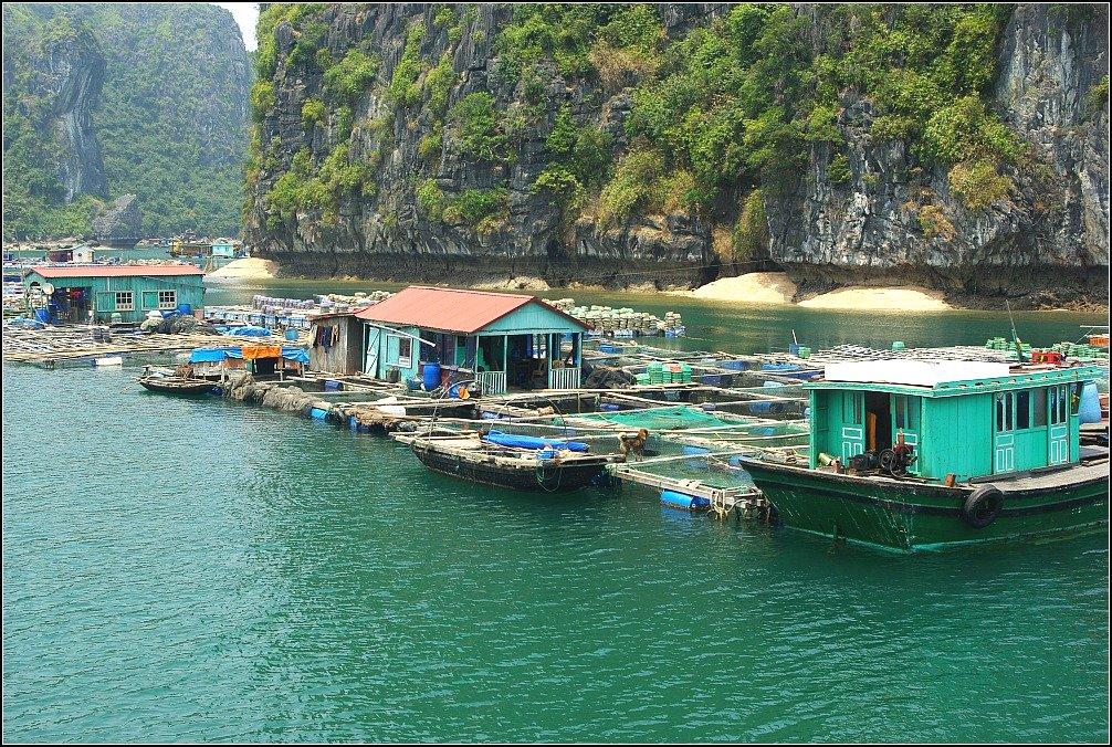 Lan Ha Bay Fishing Village Vietnam