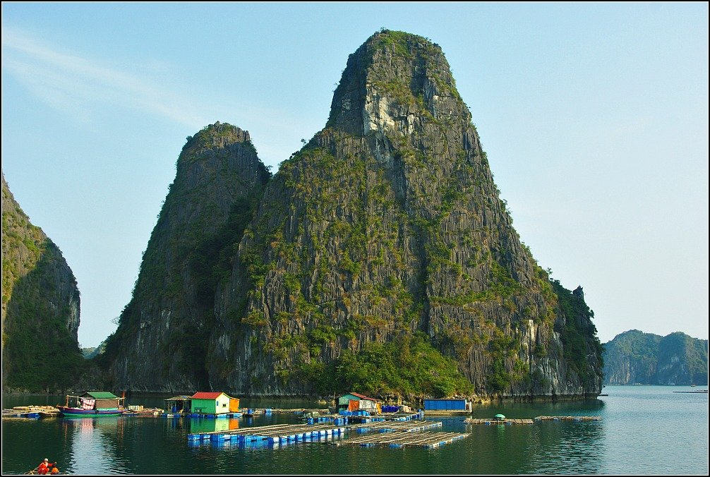 Lan Ha Bay Mussels are grown in containers of sand