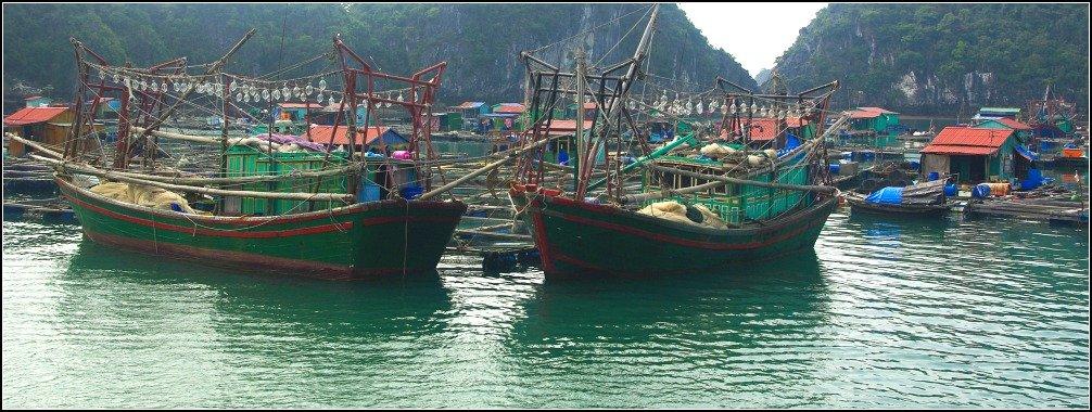 Squid fishing Boats Lan Ha Bay Vietnam