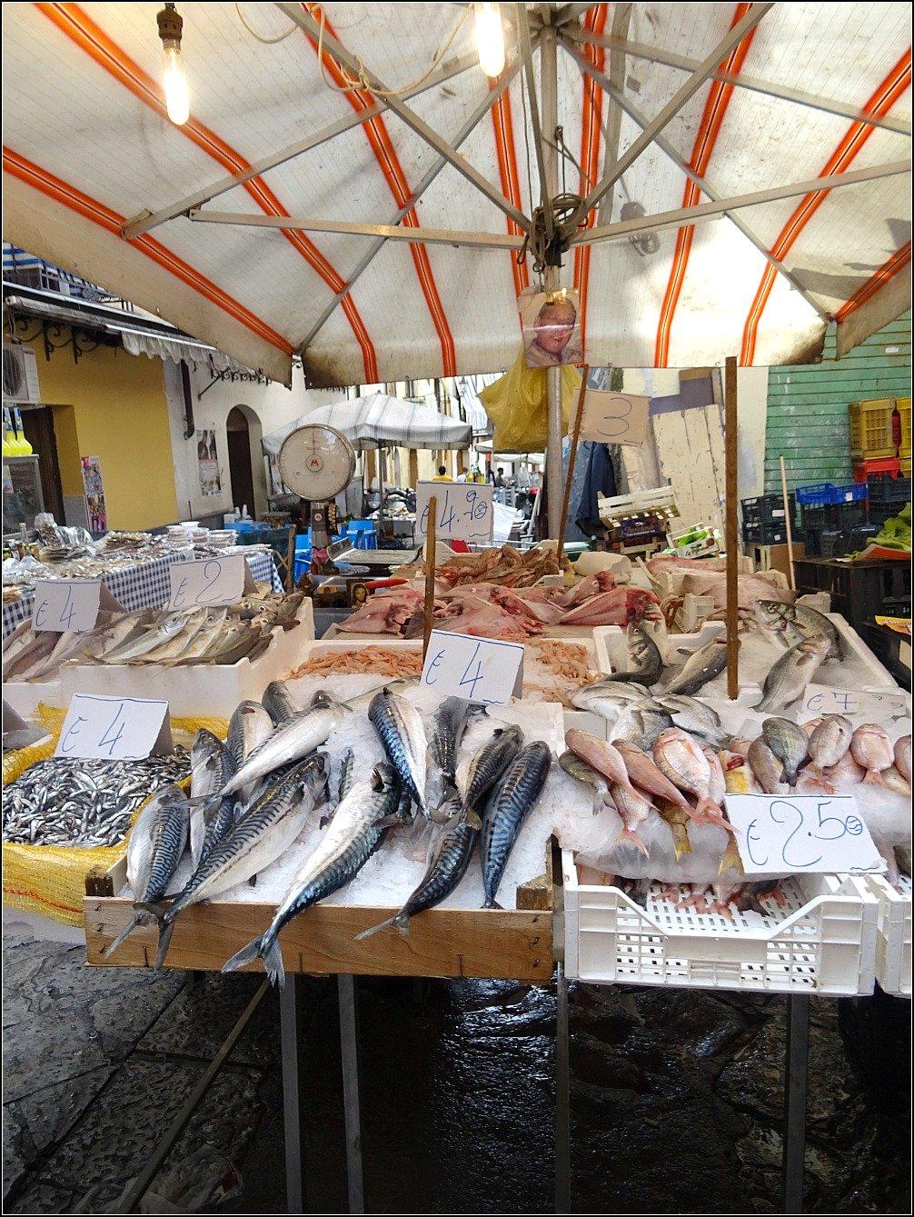 Palermo Fish at Market