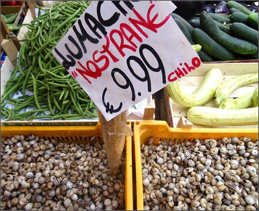 Snails for Sale Palermo Sicily
