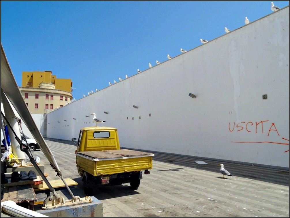 Trapani Fish Market Wall