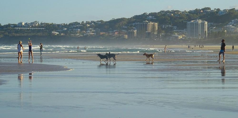 Coolum Dog Beach at Stumers