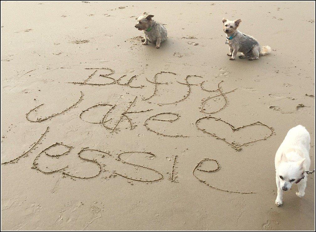 Stumers Beach Writing