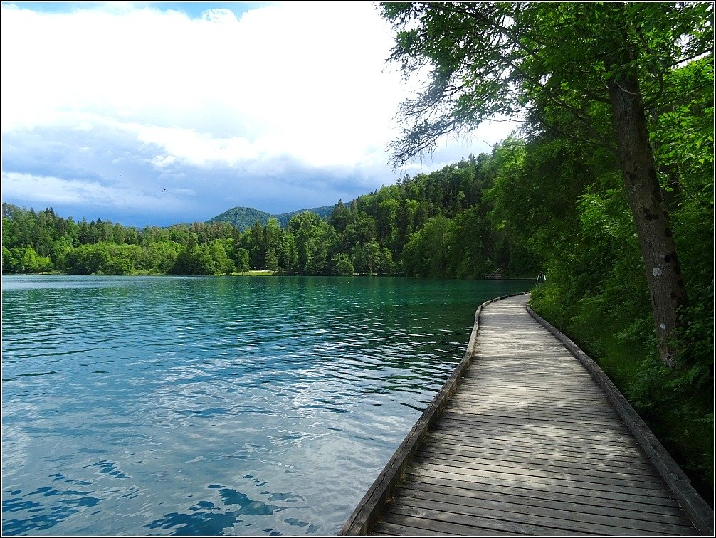 Bled Lake Walkway