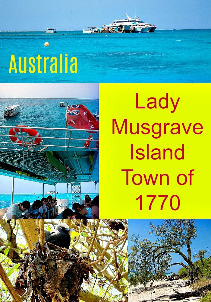 Collage of snippets from a Lady Musgrave Island Dayt trip from Town of 1770