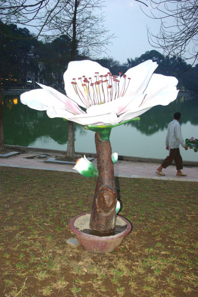 Flower Art - Hoan Kiem Lake, Hanoi