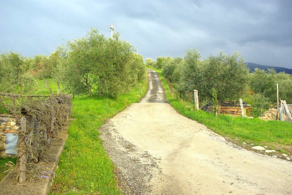 The road that led past San Vincenzo