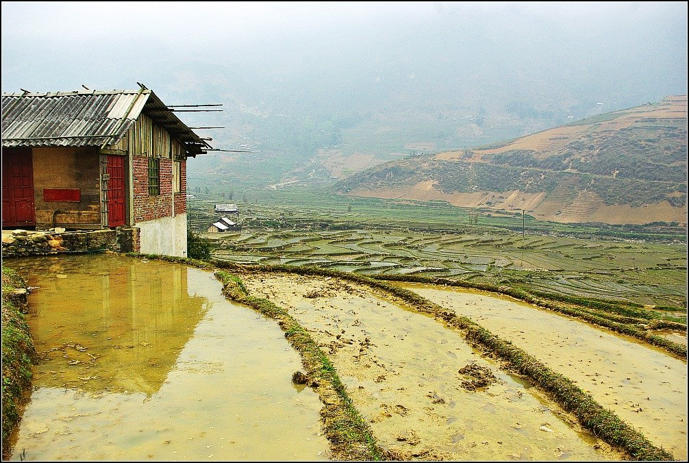 Sapa Valley Rice Paddies while trekking in Vietnam