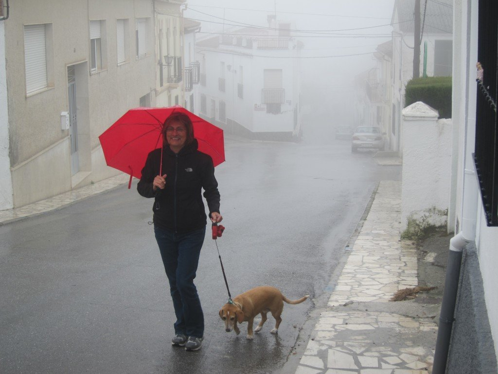 Cold and wet in the  Andalucian mountains