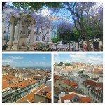 Discover Lisbon Miradouros