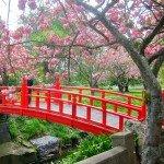 Oamaru Public Gardens New Zealand