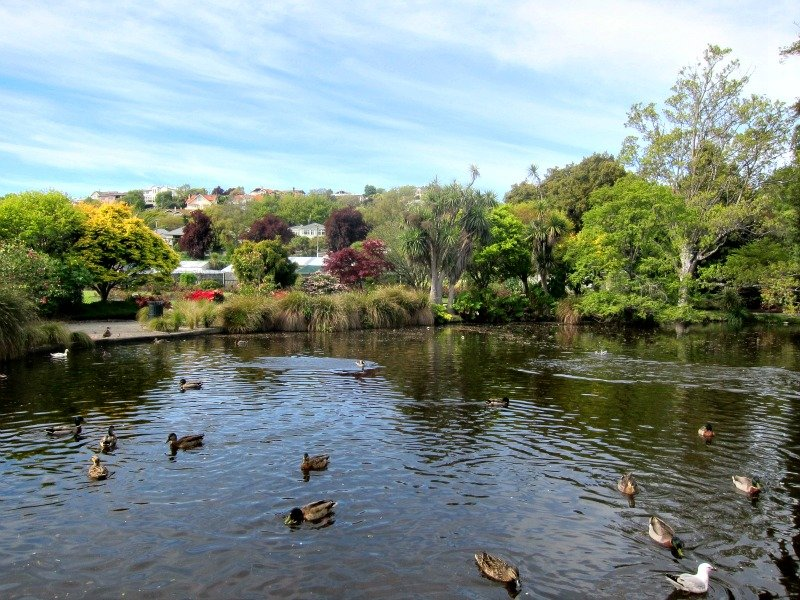 Oamaru Public Gardens Duck Pond