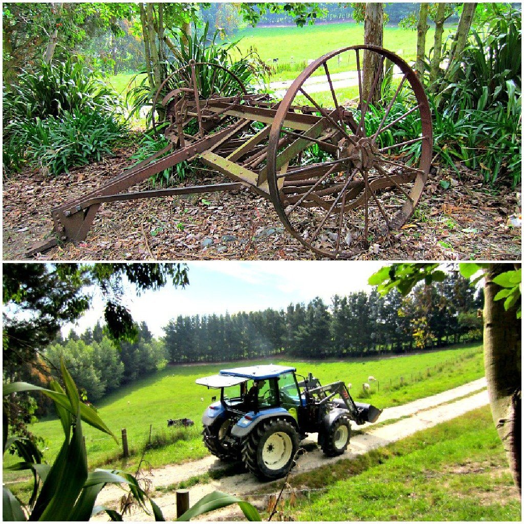 Gumtree farming Impelemts - The old and The New.