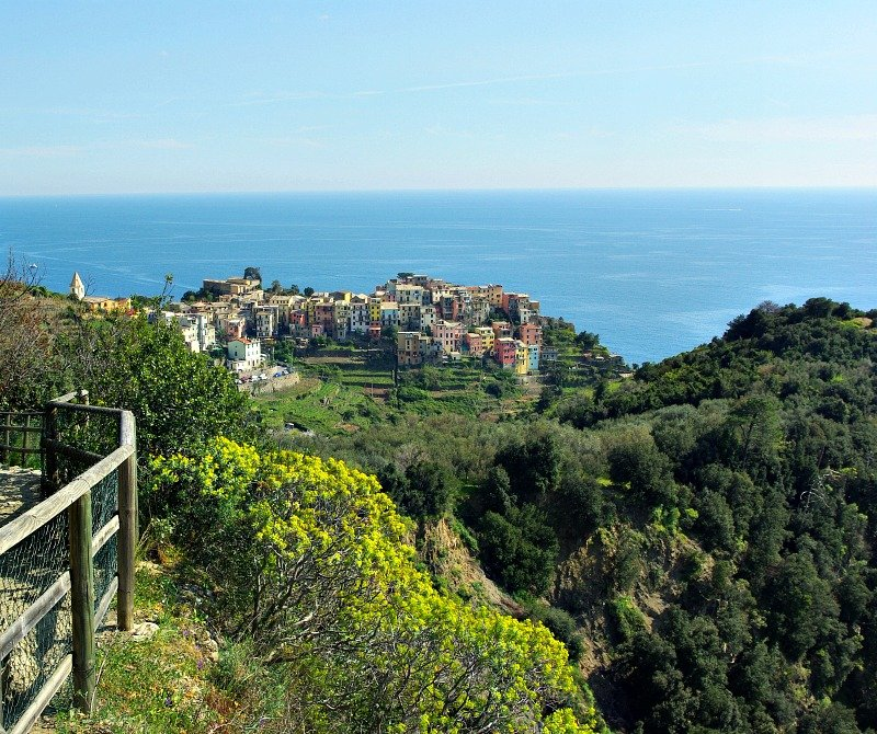 Nearly at Corniglia, the third town on our Cinque Terre Walk.