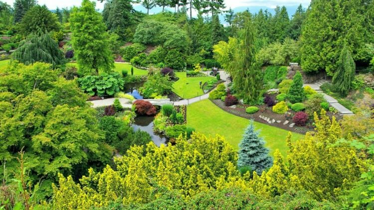 Image of the Quarry at Queen Elizabeth Garden Vancouver taken in two parts and joined