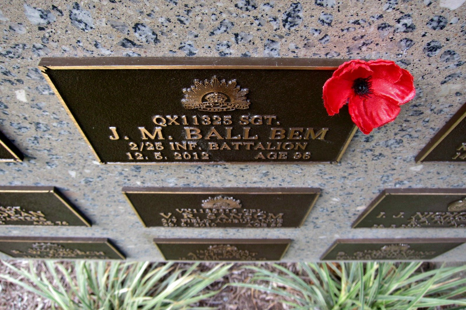A Poppy tucked into a memorial plaque -Anzac Day - N.Q. Garden of Remembrance