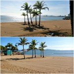 Tuesday in Townsville – Strand Beach or Japanese Zen Garden