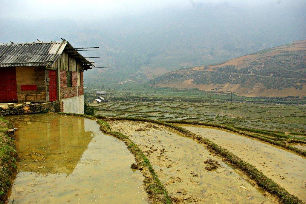 Misty terraces of Sapa