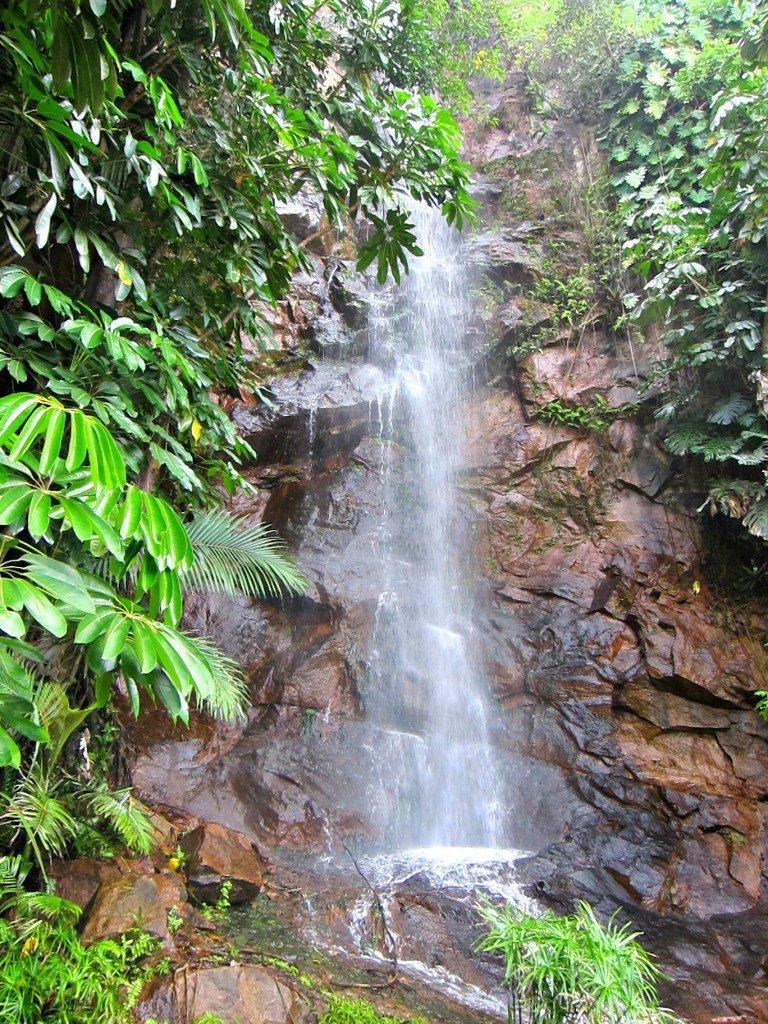 Waterfall on Rock Face