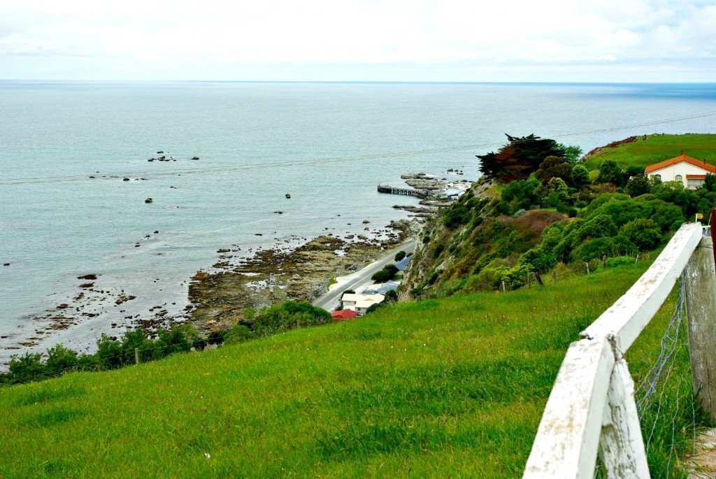 From Kaikoura Lookout