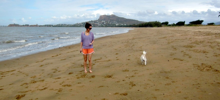 Where Can A Dog Run Free In Townsville