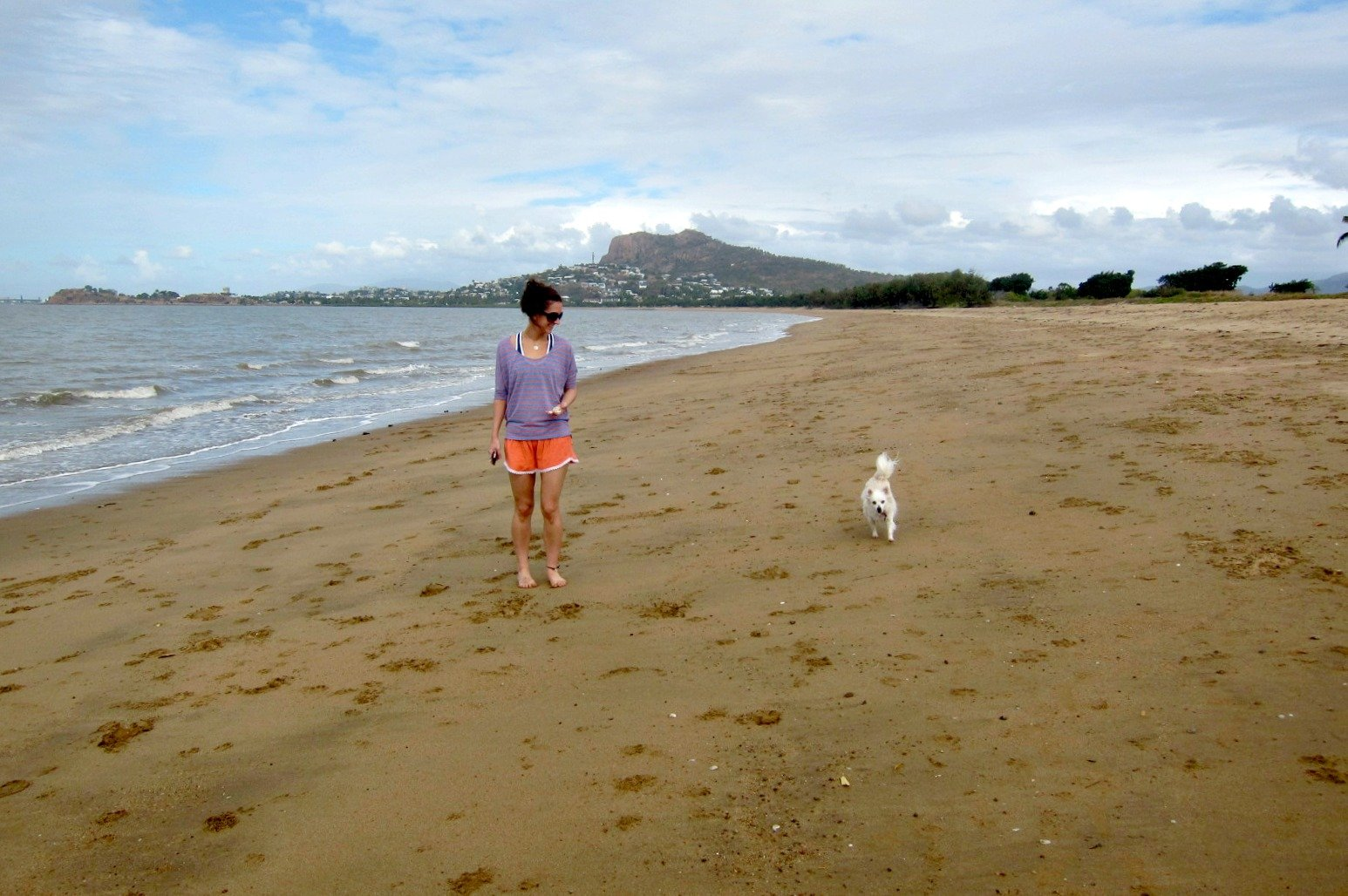 The Off Leash area at Pallarenda, Townsville