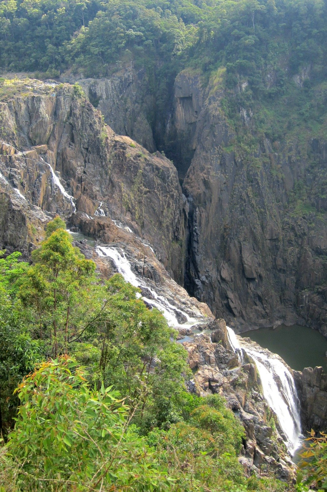 A section of the Barron Falls
