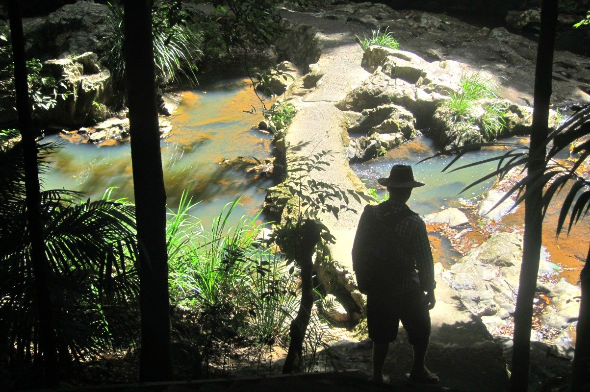Kuranda Walk beside a small stream