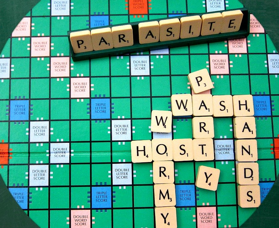 Wormy Scrabble
