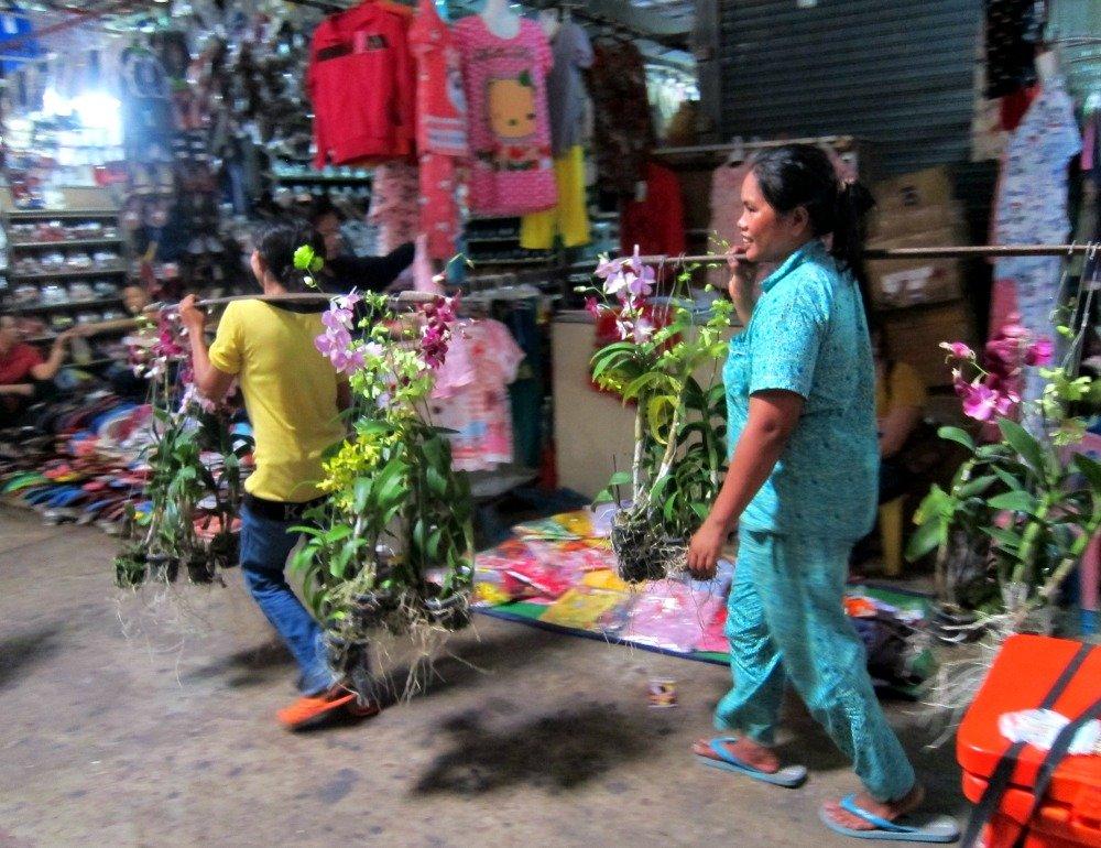 Sihanoukville Market Orchids