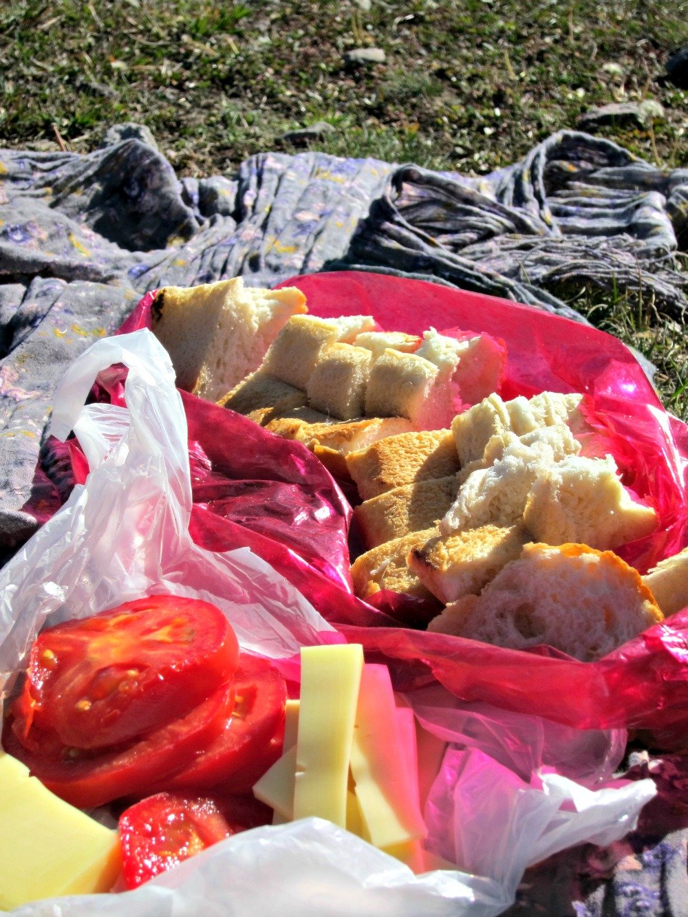 Quality Picnic Ingredients