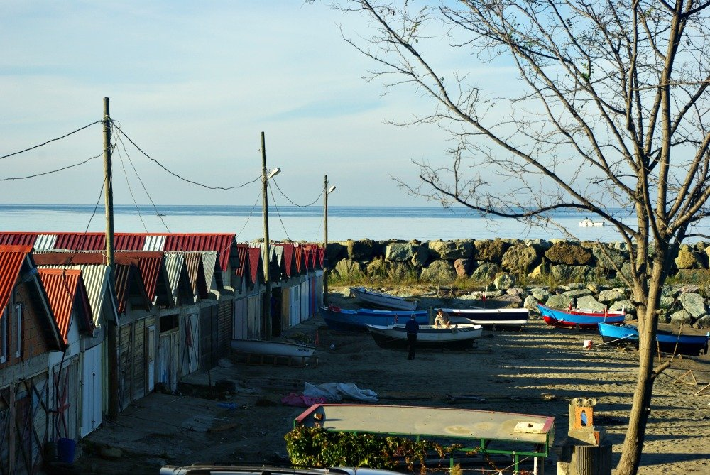 Day 7 Black Sea Boat Shed