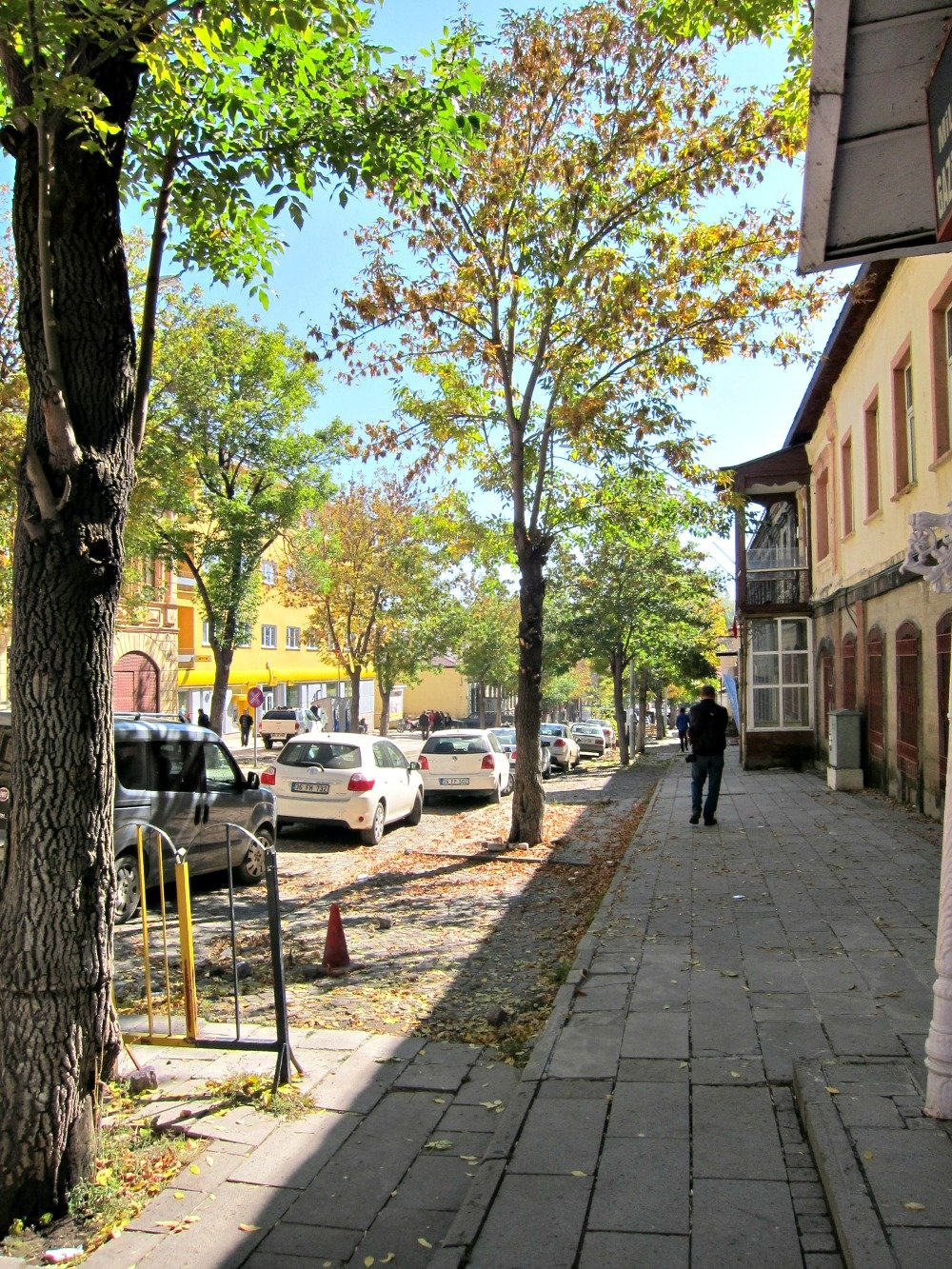 Kars Autumn Trees at the quiet end of town.