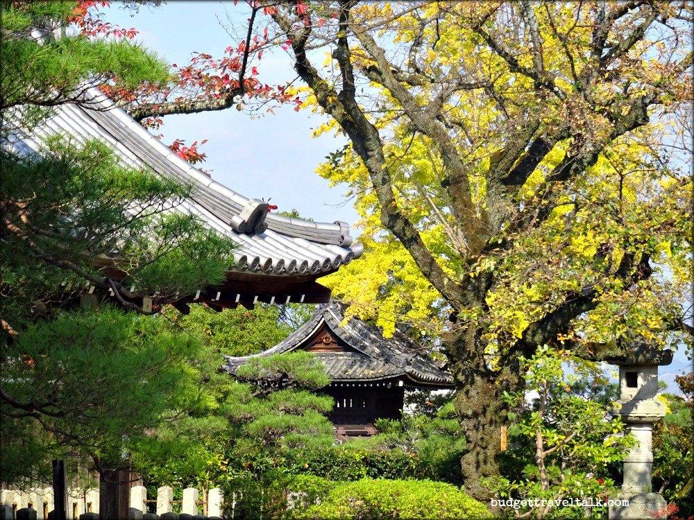 Kyoto Southern Higashiyama Rooftops and Treetops