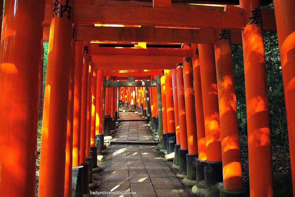 Fushimi Inari Torii Dappled Sunlight