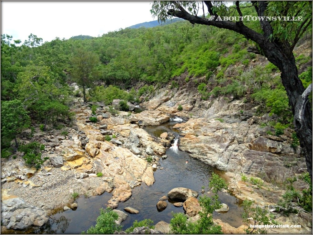 Alligator Creek from Lookout