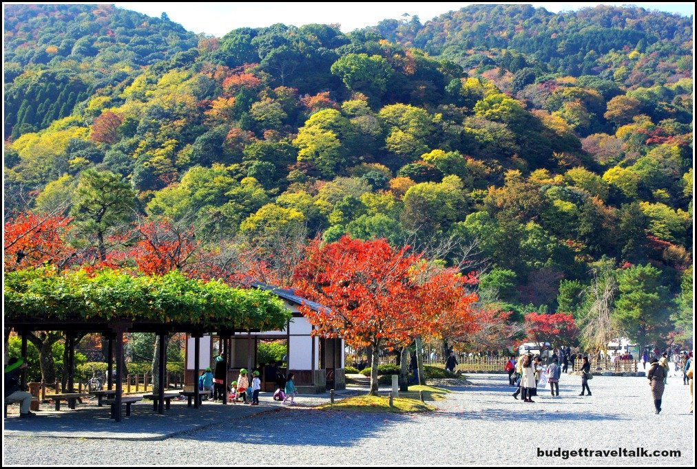 Arashiyama Autumn Colours