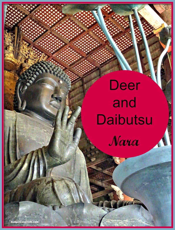 Deer-Daibutsu-pin