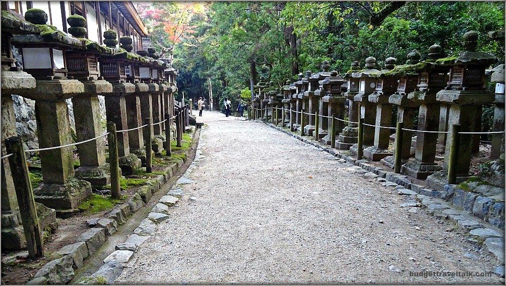 Nara pathways