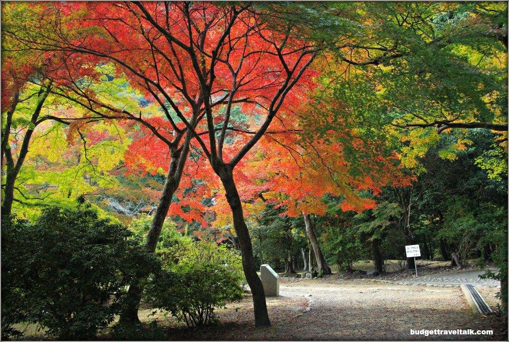 Arashiyama Kameyama Park Paths