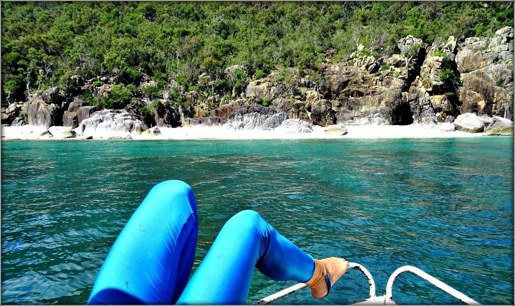 Lucinda Island Trip Stinger Suit