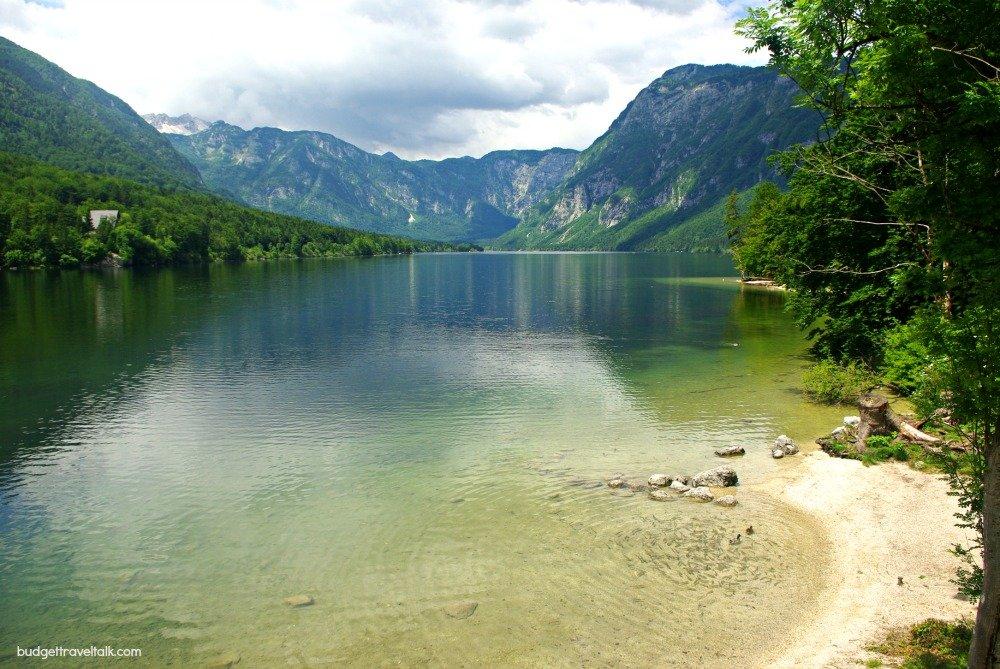 Lake Bohinj Fish and Ducks